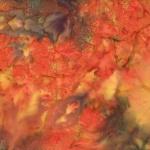 1384-66-Autumn