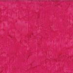 R2284-219-Carnation <!DATE>