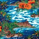 BBHC-1026-61-Turquoise