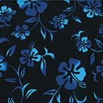 BBKT-919-4-Black-Turquoise <!DATE>