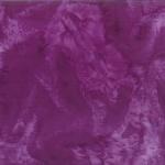 1895-14-Purple <!DATE>