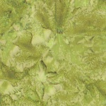 1895-178-Leaf