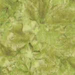 1895-178-Leaf <!DATE>