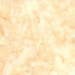 1895-205-Latte <!DATE>