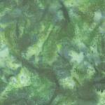 1895-377-Spinach