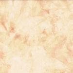 1895-401-Tortilla <!DATE>