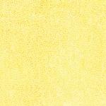 885-149-Sun <!DATE>