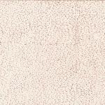 885-488-Sandcastle <!DATE>