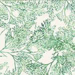 R2253-522-Seagrass <!DATE>