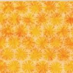 S2304-149-Sun <!DATE>
