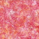 S2316-448-Blossom <!DATE>