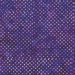 S2322-81-Violet <!DATE>