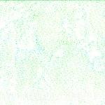 885-522-Seagrass