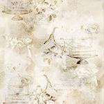 MRD20-134-Parchment <!DATE>