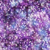 T4904-81-Violet <!DATE>