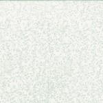 T2432-521-Mist <!DATE>