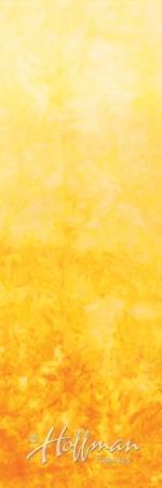 851-177-Cheddar <!DATE>