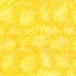 884-149-Sun <!DATE>
