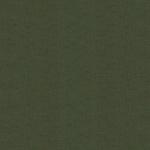 100-166-Evergreen