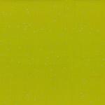 148-95S-Mustard-Silver <!DATE>