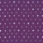 167-14S-Purple-Silver <!DATE>
